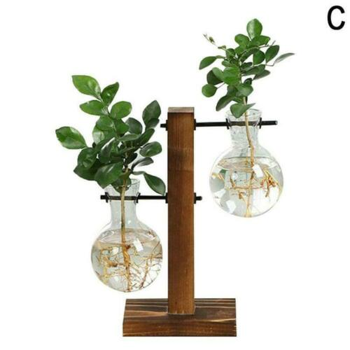 Glass Hydroponic Plants Vase Terrarium With Wooden Stand Transparent Flowers New