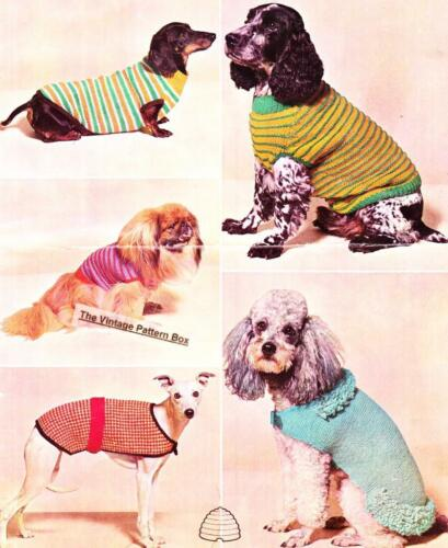 DOG COATS /& SWEATERS COPY dog knitting pattern 8ply or DK