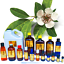 3ml-Essential-Oils-Many-Different-Oils-To-Choose-From-Buy-3-Get-1-Free thumbnail 31