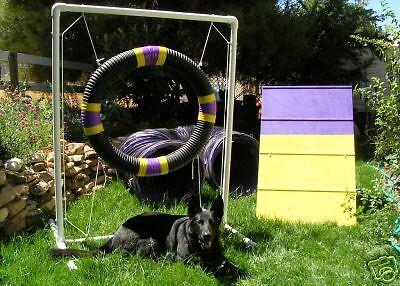 Dog Agility Mini A-Frame & 10' tunnel Tire Jump Combo