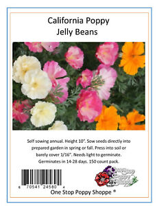 150 california poppy flower seeds jelly beans poppies eschscholzia image is loading 150 california poppy flower seeds jelly beans poppies mightylinksfo