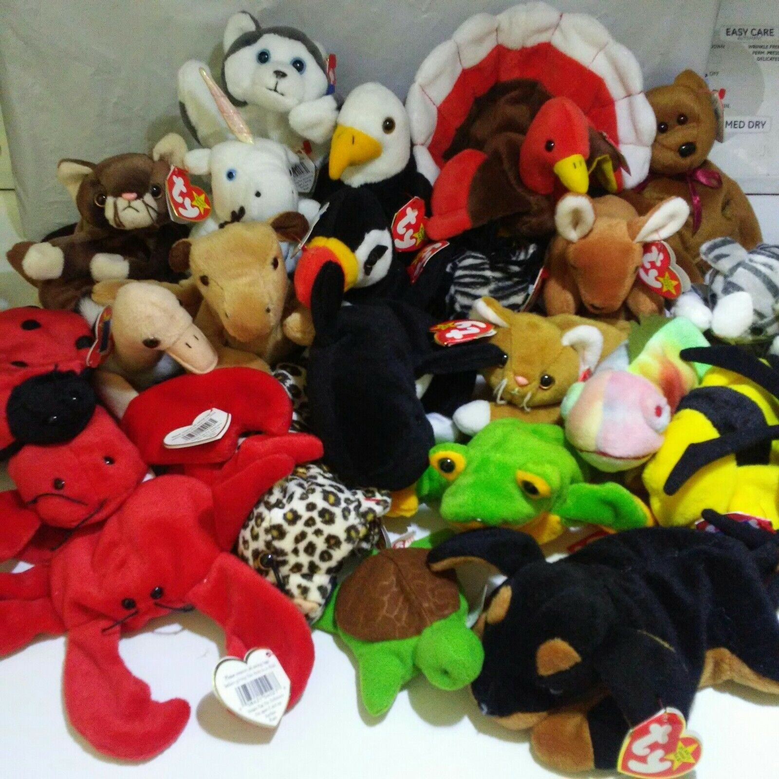 The beanie baby collection 1993-1997 lot of 24