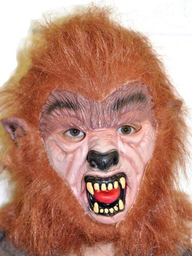 Teen Wolf Marrone LUPO MANNARO Maschera Halloween Horror Costume anni/'80 Cosplay Costume