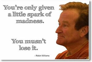 Robin-Williams-NEW-Famous-Actor-Comedian-POSTER