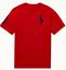 Polo-Ralph-Lauren-Enfants-Garcons-Filles-a-encolure-ras-du-cou-manches-courtes-T-Shirt-top-2-To miniature 13