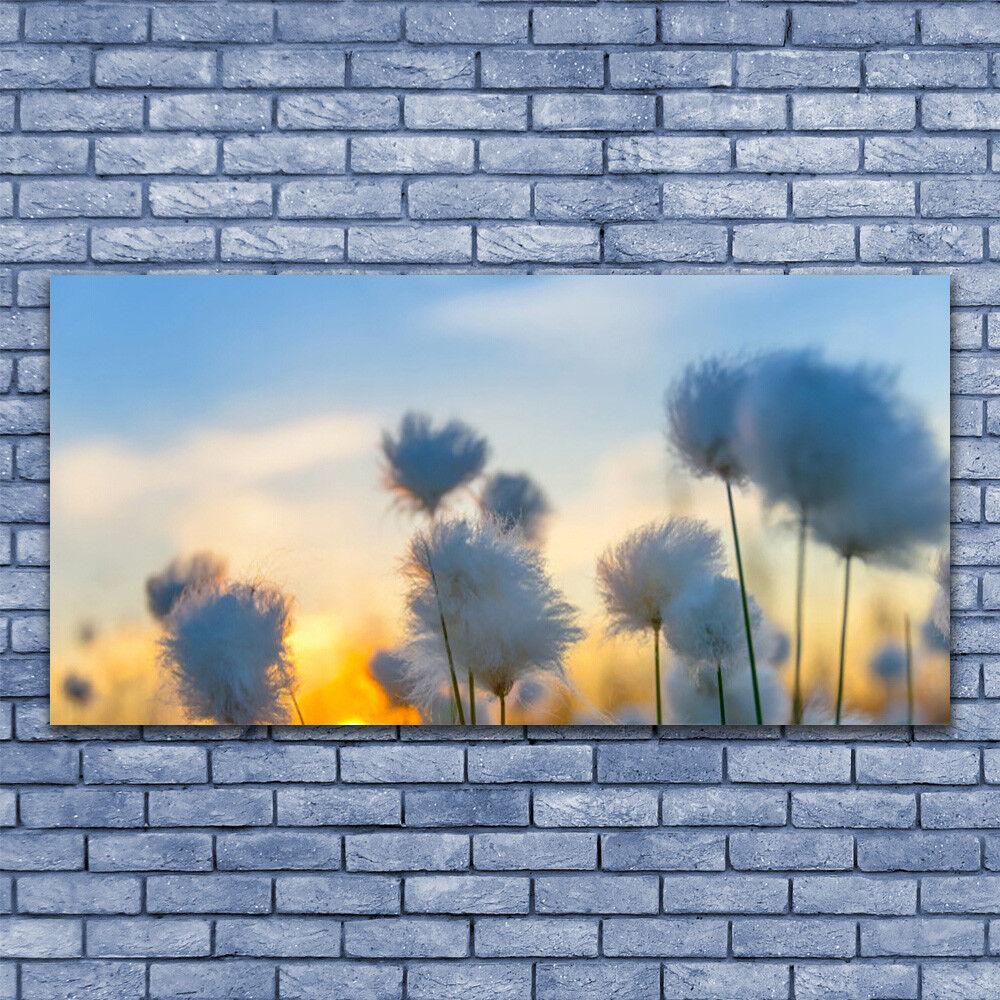 Wandbilder Glasbilder Druck auf Glas 140x70 Blaumen Pflanzen
