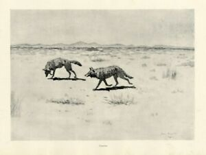 FREDERIC-REMINGTON-HUNGARY-COYOTES-CROSSING-THE-PLAINS-IN-SEARCH-OF-FOOD-COYOTE