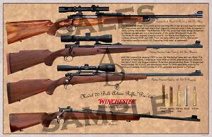 winchester model 64 history