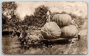 034-Profitable-Soil-034-in-Langdon-Kansas-Exaggerated-Pumpkins-Farmers-Wagon-1909-RPPC