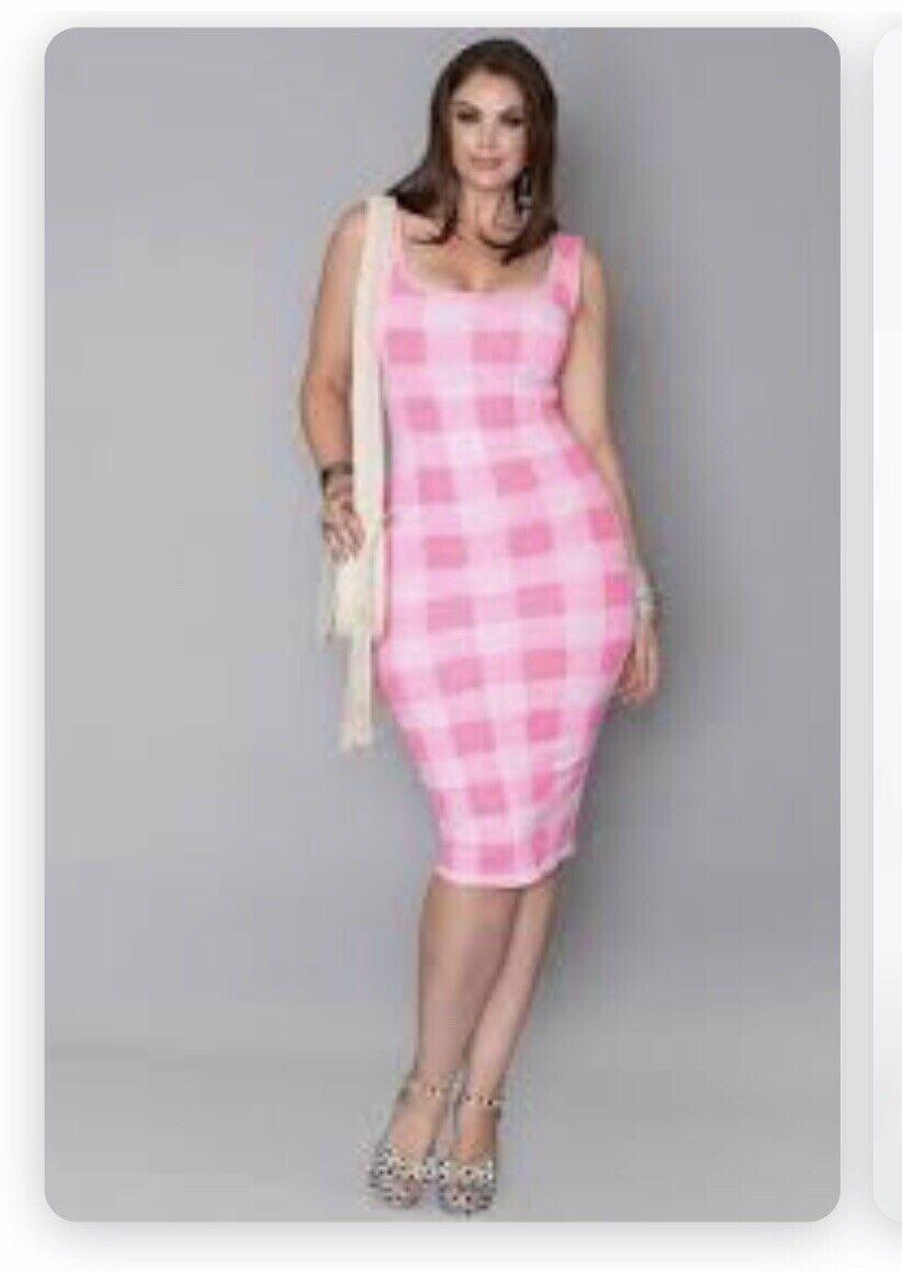 Rue 107 Nee York Plaid Rosa Checkerot Fitted Midi Dress Größe 3X NWT