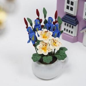Blumenvase-mit-Narzissen-Puppenhaus-Dekor-Miniatur-1-12-Dollhouse-Deko-NEU