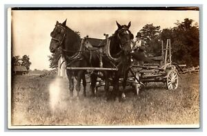 Draft Horses & Wagon Farm Implement RPPC Real Photo Postcard 1904-18