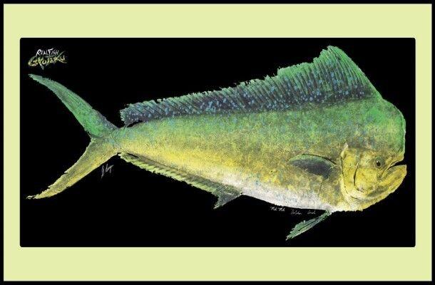 Realfish gyoyaku Series Delfín Mahi-Mahi peces Mat  Alfombra Felpudo Alfombra  distribución global
