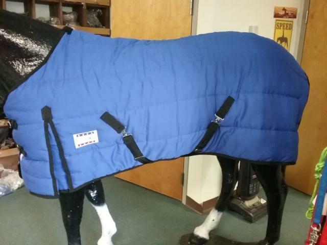 78  Grün WINTER HORSE BLANKET   TURNOUT 600 DENIER TEAR STOP NYLON NEW