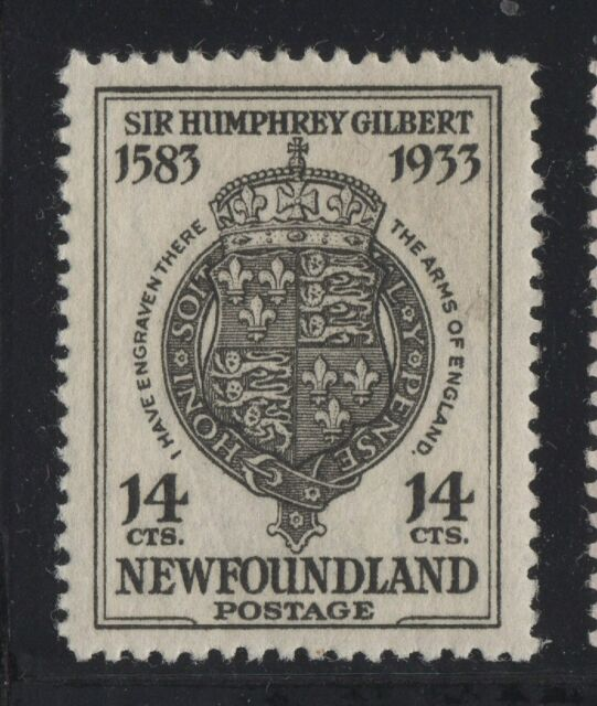 #221 Newfoundland Canada mint well centered