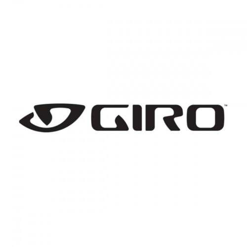 Giro Montaro Visor