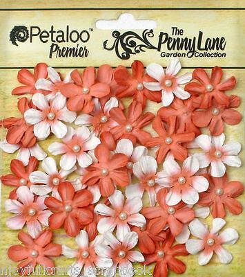 Mini Daisy Petite ANTIQUE RED 40 Paper 20-22mm Pearl Centre Penny Lane Petaloo