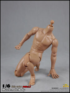 COOMODEL BD003 1//6 Skin Color New 2.0 Standard Muscle Male Body No Head