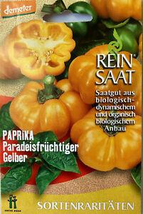 Paprika Paradeisfrüchtiger Gelber - Saatgut - Samen  - Demeter Paprikasamen Bio