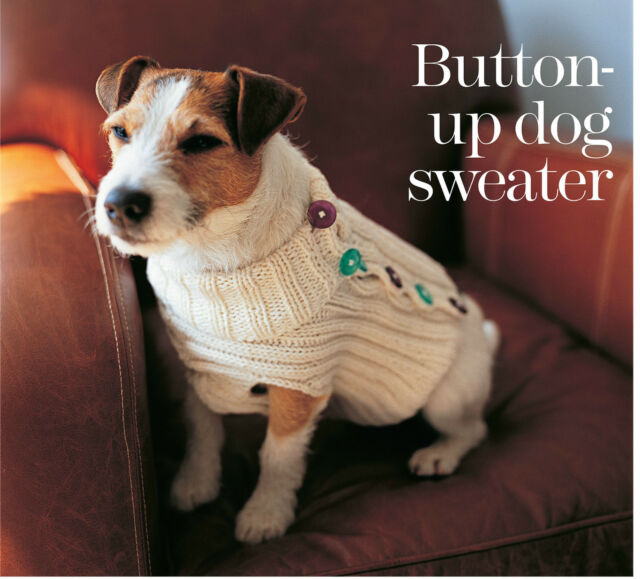 button up dog sweater pattern 99p