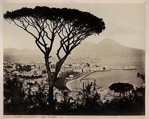 Napoli-Panorama-Italia-Italy-Vintage-Albumina-Ca-1875
