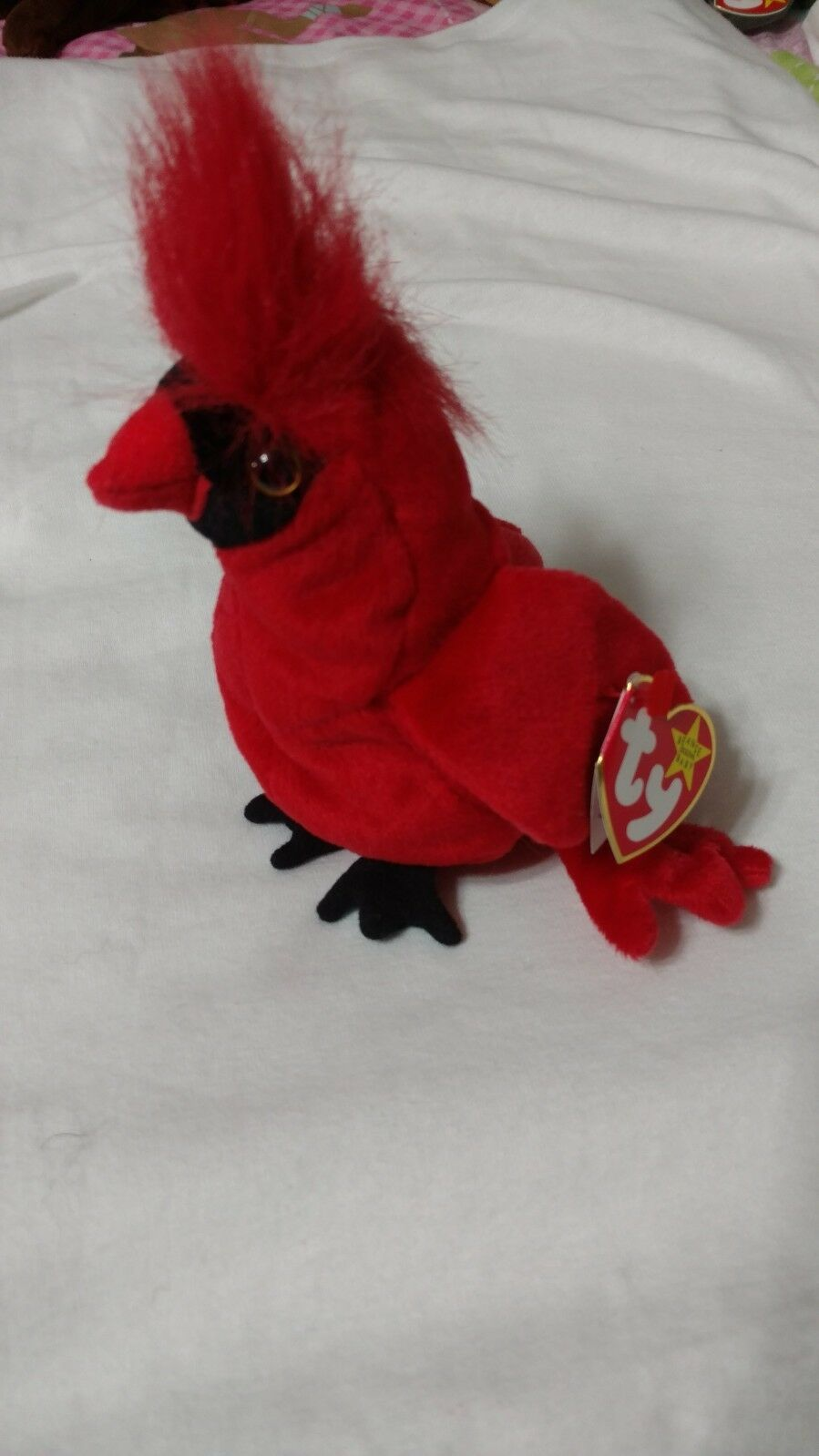Ty Beanie Baby Mac the Cardinal 1998 1999 All Errors Perfect Condition