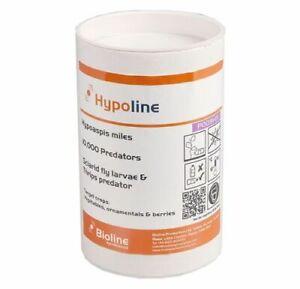 Hypoline-m-hypoaspis-10-000