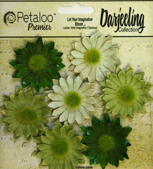 Dahlia Mix TEAL 10 Teastained Paper Flowers 40mm across Darjeeling Petaloo Ver