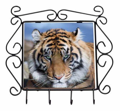 Bengal Tiger Wrought Iron Key Holder Hooks Christmas Gift AT-15KH