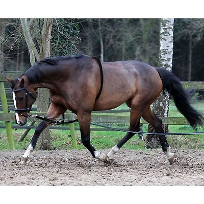 Horka Equina 8 Metro Morbido Briglie Pony Cob Full Resistente Aiuti Alla Formazione Lunging Fune- Elegante E Grazioso
