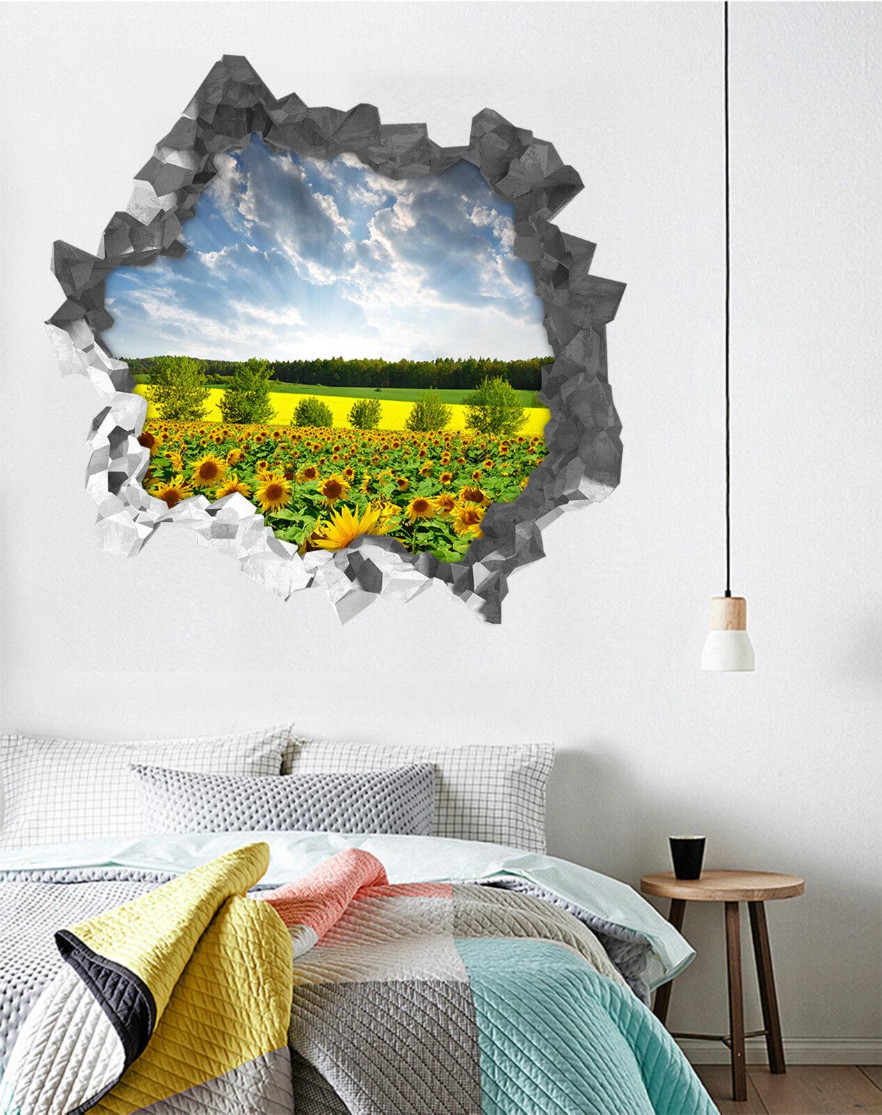 3D Himmel Rasen 522 Mauer Murals Aufklebe Decal Durchbruch AJ WALLPAPER DE Lemon