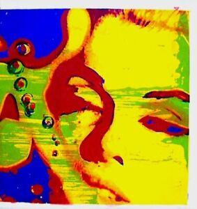 Marilyn-Monroe-1968-Bert-Stern-Silkscreen-Serigraph-Art-Last-Sitting-VTG-COA-3A
