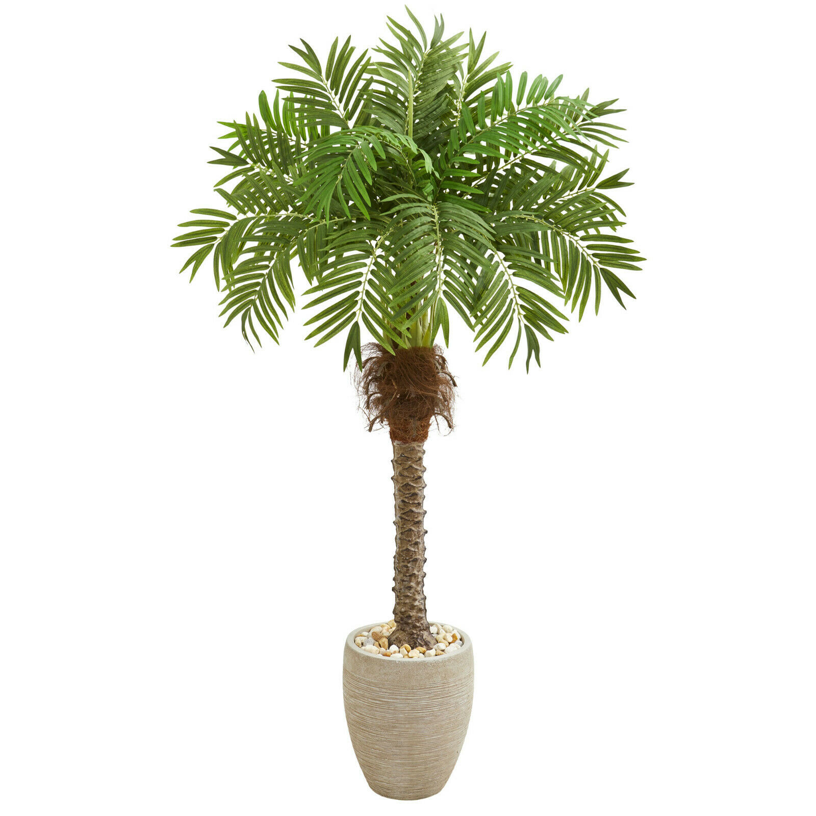 "63"" Great Robellini Palm' Artificial Silk Tree in Weiß Sandstone Planter"