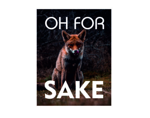 Oh for fox sake funny vintage style metal wall plaque sign