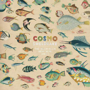 Cosmo-Sheldrake-The-Much-Much-How-How-And-I-LP-VINYL-Transgressive-Records-2018