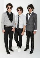 Jonas Brothers 14 X 11 Photo Print