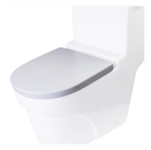 Pleasant Details About Eago Fresca Ariel Tassili Tb326 Toilet Seat Andrewgaddart Wooden Chair Designs For Living Room Andrewgaddartcom