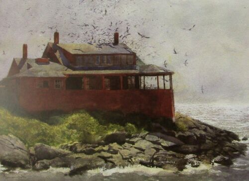 Vintage Art James Wyeth 1972 The Red House Nautical Beach Shore Seagulls Cottage