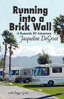 Running Into a Brick Wall by Jacqueline DeGroot (Paperback / softback, 2011)