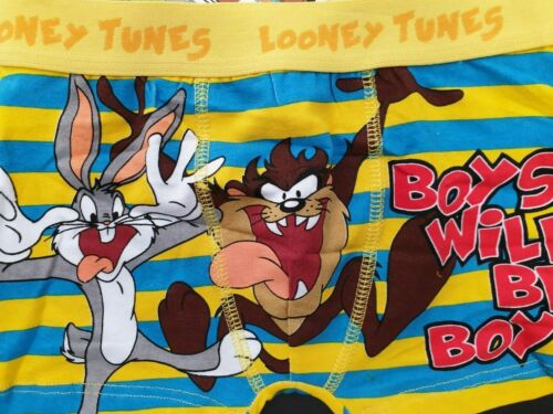BNWT Boys Sz 3 to 4 Cool Looney Tunes Yellow Blue Boxers Trunks