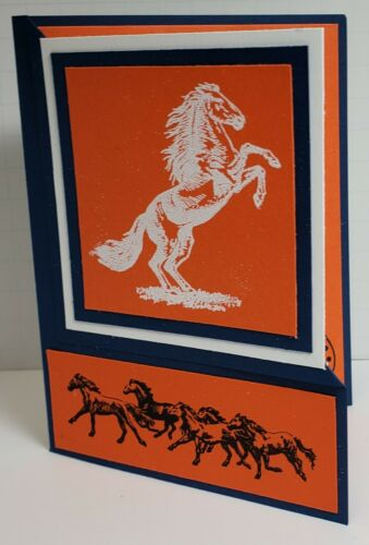 Happy Birthday For the Denver Bronco Fan Handcrafted Greeting Card