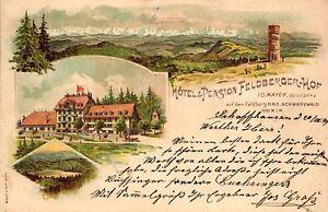 Schwarzwald-Farb-Litho-Hotel-u-Pension-034-Feldberger-Hof-034-1899