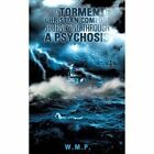 From Torment to Christian Comfort Journeying Through a Psychosis by W M P (Paperback / softback, 2013)