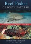 Reef Fishes of South-East Asia by Elizabeth Wood, Michael Aw (Paperback, 2016)