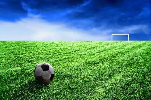 Soccer Field CANVAS OR PRINT WALL ART