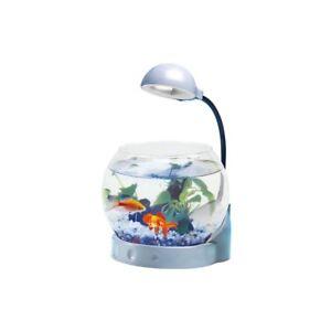 Mini acquario vetro con illuminazione led boccia pesci con for Mini pond con pesci
