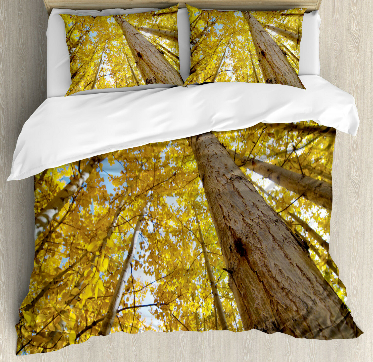 Scenery Duvet Cover Set with Pillow Shams Aspen Trees in Forest Print