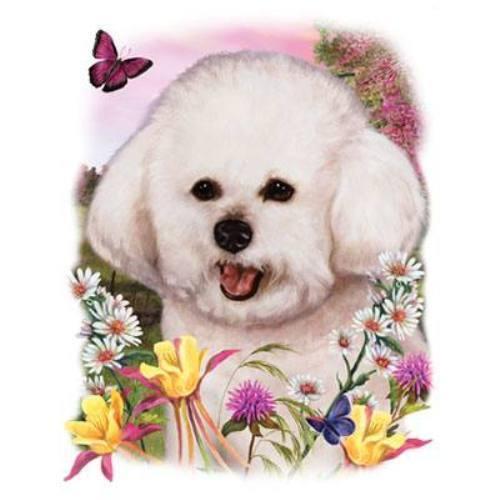 Long Sleeve White T Shirt S-3X Bichon Frise Dog Floral Art Scene Ladies Short