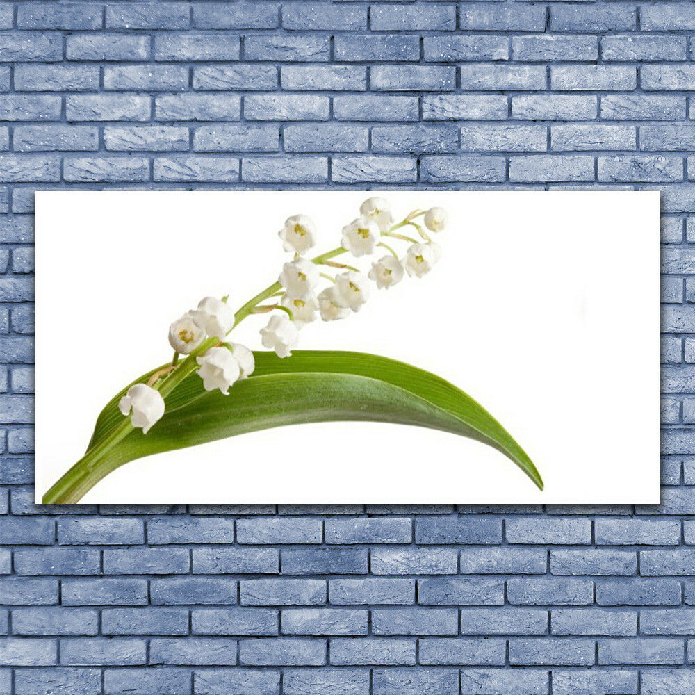 Print on Glass Wall art art art 140x70 Picture Image Flowers Floral 1098f6