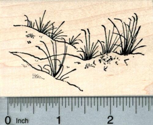 Dune Grass Rubber Stamp Summer Beach Travel Series J32207   WM